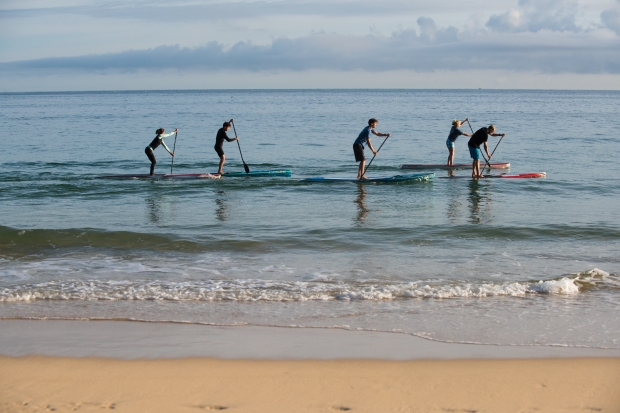 ST Ives SUP-5848