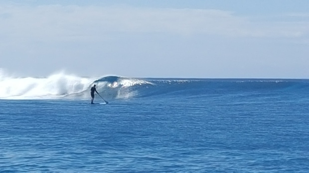 Maldives lineup