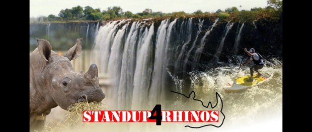 Standing up for rhinos